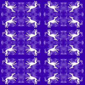 InqusitiveHoundQuad-White Hound  on Blue