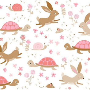 tortoise, hare, mouse and snail