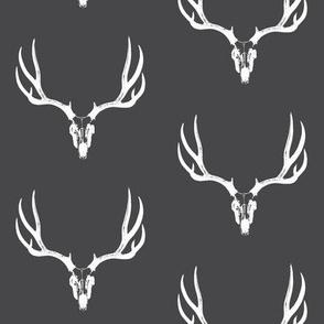 Deer Skulls on Charcoal // Large
