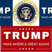 Trump-2018_ed_shop_thumb