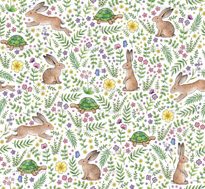 Spring Time Tortoises and Hares