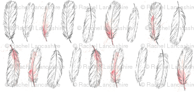 spoonbill feathers