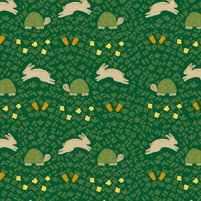 slow poke bunny race