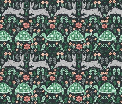 Rrrtortoise-hare-2_shop_preview