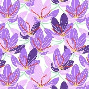 Ultra-Violet Crocus Joy (white)