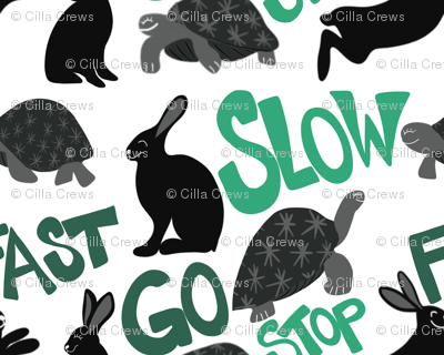 Fast Hare & Slow Turtle