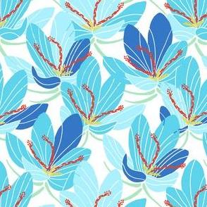 Blue Crocus Joy (white)