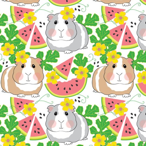 Rguinea-pigs-in-a-watermelon-patch-on-white_shop_preview