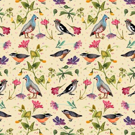 Rrrrrrwildflowers_and_birds_shop_preview