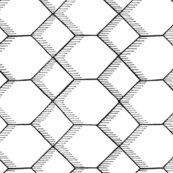 Rhexagon_shop_thumb