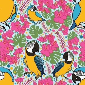 Macaw Madness
