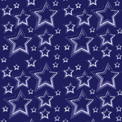 Stars Navy