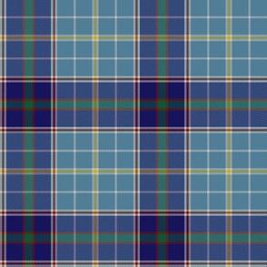 """Texas bluebonnet tartan, 4"""" greyed"""