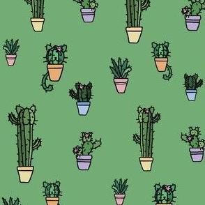 CATcus (Cat Cactus) - Green Variant