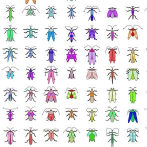Rainbow Bugs