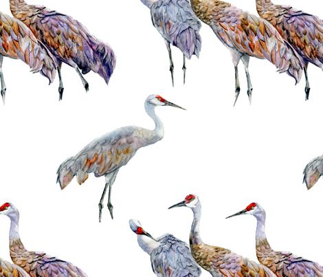 Sandhill Cranes fabric by vickylilla on Spoonflower - custom fabric