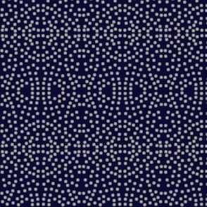 A Lacy Mesh of Twinkling Dots on Blackberry - Extra Small Scale