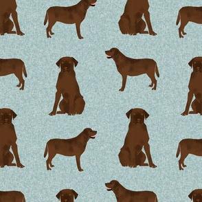 labrador retriever chocolate lab pet quilt b quilt coordinates dog fabric