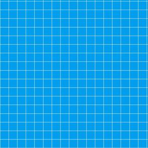 Sky blue plaid fabric pattern.
