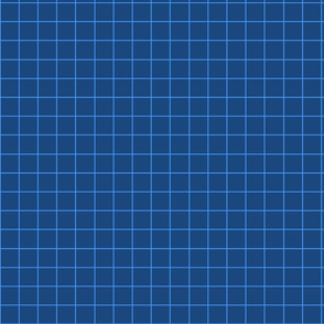 Navy plaid fabric pattern.