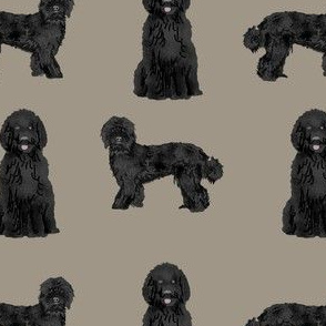 labradoodle dog fabric - black labradoodles design - brown