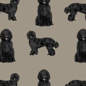 labradoodle dog fabric - black labradoodles design - brown