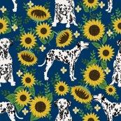 Rdalmatian-sunflower_shop_thumb