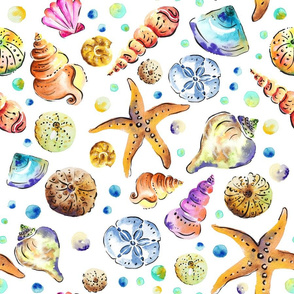 Starfish & shells watercolour