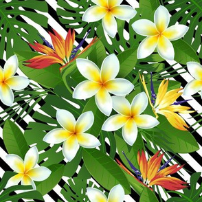 Topical Hawaii Plumeria Bird of Paradise Flowers Floral Black and White Stripes