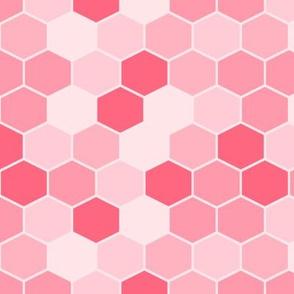 Honeycomb hexagon coordinate fly pink
