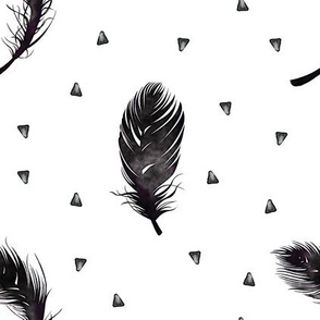 feathers and triangles