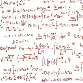 Math Notes in Red Ink // Large