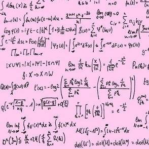 Math Notes on Pink // Large