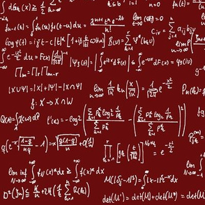 Math Notes on Maroon // Large