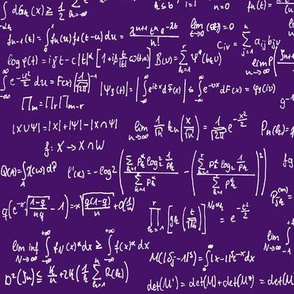 Math Notes on Purple // Large