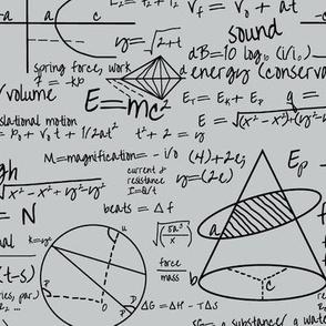 Common Equations - Light Grey // Small