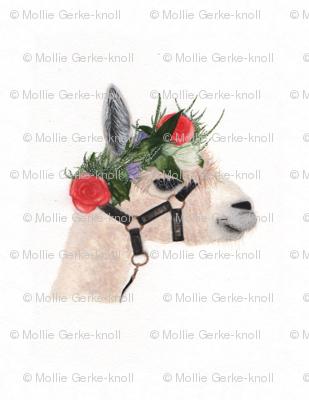 Boho Alpaca-watercolor