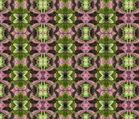 Fern Flight fabric by tara_symmagery on Spoonflower - custom fabric