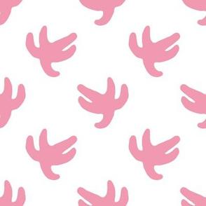 starfish pink