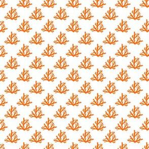 coral orange ~1 x3/4 inch