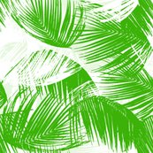 Rgreenpalm_copy_shop_thumb