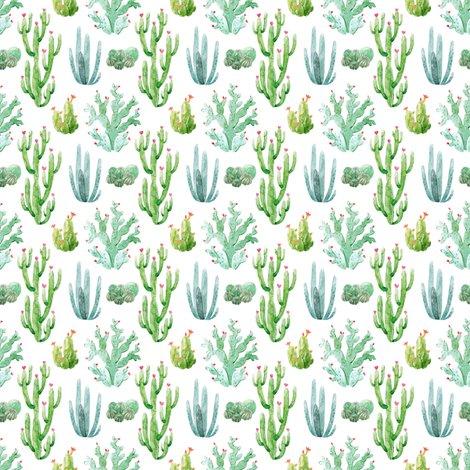 Rwatercolor_desert_cactus_shop_preview