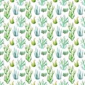 Rwatercolor_desert_cactus_shop_thumb