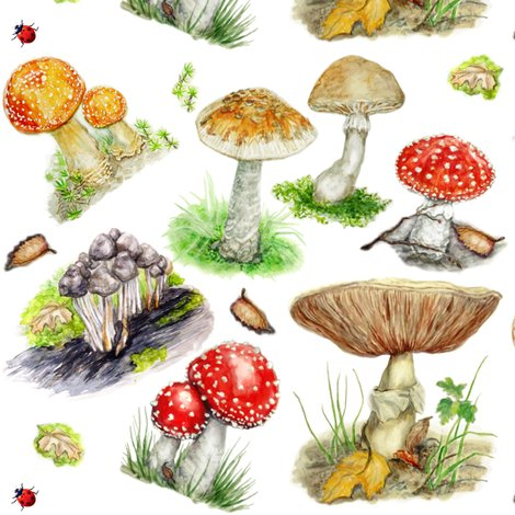 Rrmushroomforestoveff_shop_preview