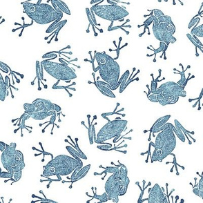 navy frogs on white