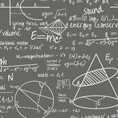 Rcommon-equations-grey_shop_thumb