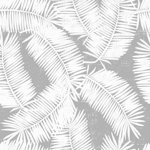 palm fronds on grey