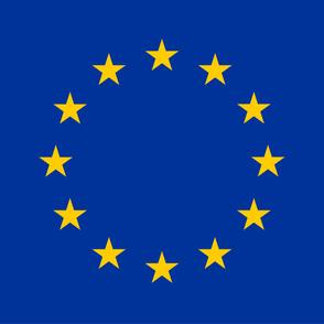 """EU Flag (54""""W)"""
