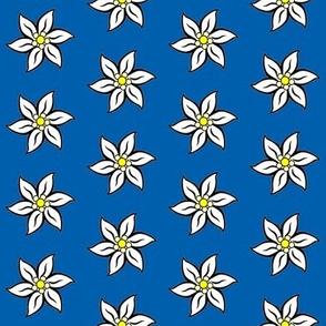 bavarian edelweiss