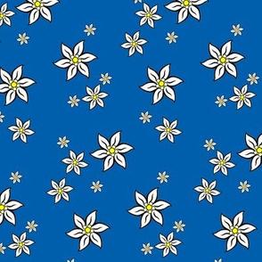 edelweiss - bavarian blue